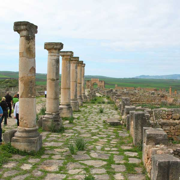 Volubilis / Meknes Excursion